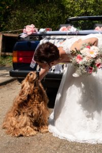 photo, mariage, impromptu